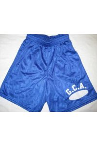 Royal Blue Mesh Shorts with GCA