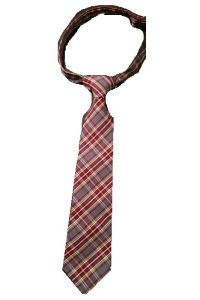 Performance Academies Boys Plaid Tie